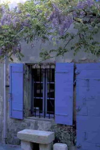 Volets-bleus-et-glycine.jpg