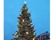 Clermont... beau sapin