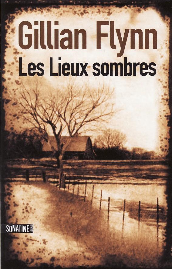 LES LIEUX SOMBRES - Gillian Flynn