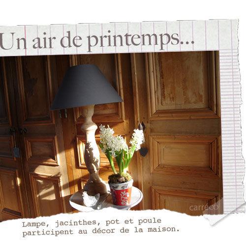 Jacinthes lampe pot et poule font la d co de la maison - La maison de la poule ...