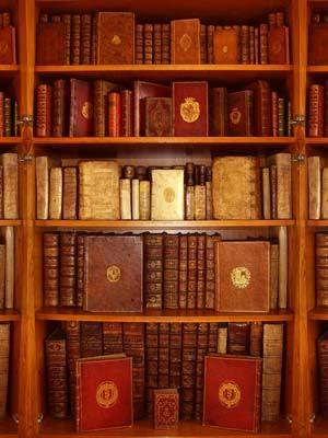 Faire-part de naissance: la librairie ancienne l'Escalier des Sages