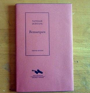 Nathalie Quintane, Remarques