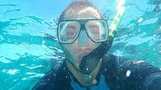Plongée sur la Grande Barrière de Corail