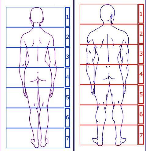 corps-humain-7-tetes.1265003617.jpg