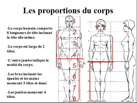 Dessin Et Peinture Vidéo 1416 Les Proportions Du Corps