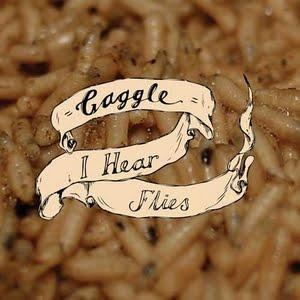 // GAGGLE - I Hear Flies (7'')