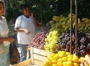 Pachamarket Jeunes Agriculteurs soutiennent vente directe.