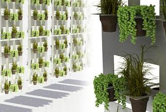 eco design un mur vegetal fait de gobelets plastiques paperblog. Black Bedroom Furniture Sets. Home Design Ideas