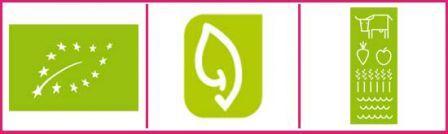foto de Un logo bio Vert feuille À Découvrir