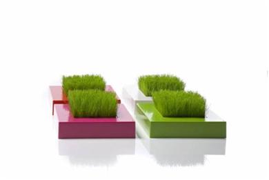 comment faire entrer la nature chez soi paperblog. Black Bedroom Furniture Sets. Home Design Ideas