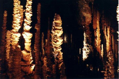 Aven Armand, forêt de pierres. Merveille façonnée par l'eau.