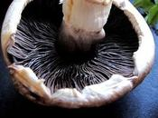 Parpadelle crème scampi noix