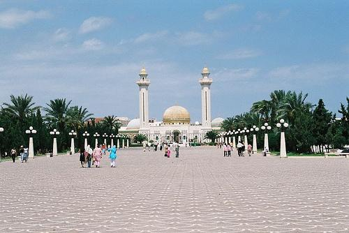 Tunis hammamet d j vu et monastir d couvrir for Piscine demontable tunisie