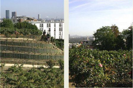 Antoine chopin vigneron sur le toit de paris voir - Piscine municipale suresnes ...