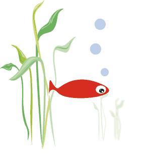 Petites choses en passant paperblog for Nourriture poisson rouge pour une semaine