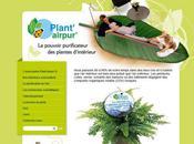 Plante'airpur site plantes dépolluantes.