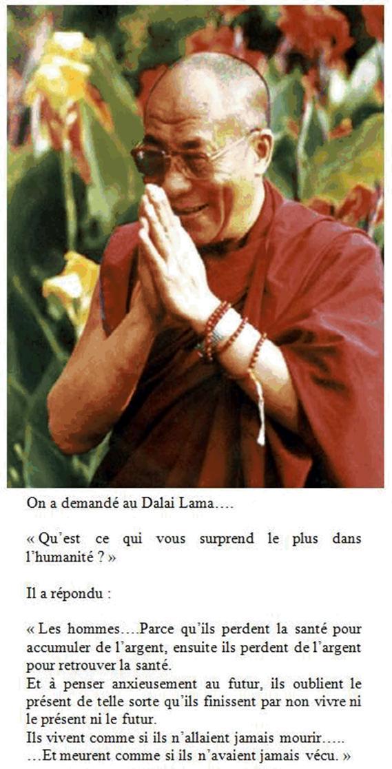 lama essay dalai lama essay