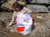 Nettoyage littoral borméen