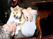 Hatchi 1ere bande annonce film avec Richard Gere chien