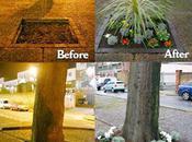 Guerrilla gardening, guerre jardins présentement dans salles Ecolo ville Ecologie urbaine
