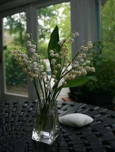 comment avoir du muguet dans son jardin voir. Black Bedroom Furniture Sets. Home Design Ideas