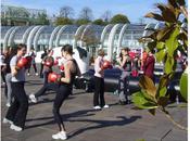 cours boxe féminine déménagent s'installent Terrasse Forum