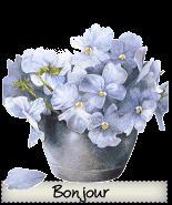 bonjour_flowers.gif