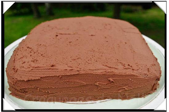 Sponge Cake Chocolat Au Micro Onde