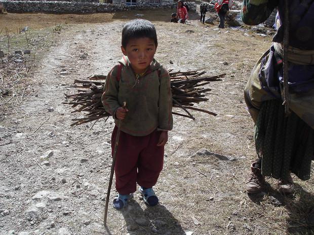 Enfant portant du bois, Népal