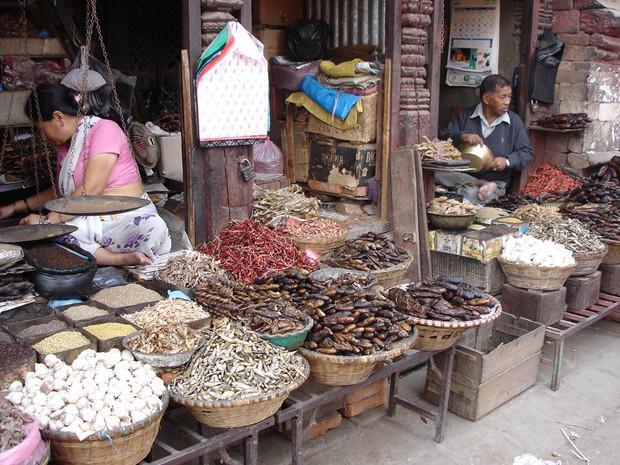Poissonnerie de Katmandou, Népal