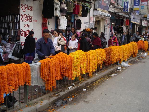 Fête de Tihar, Katmandou, Népal