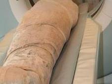 scanner révèle présence curieux dans crâne d'une momie