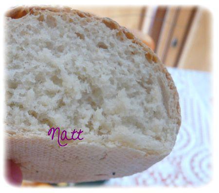 petits_pains_aux_graines_2