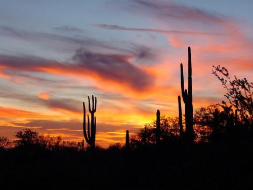 sunset-arizona.jpg