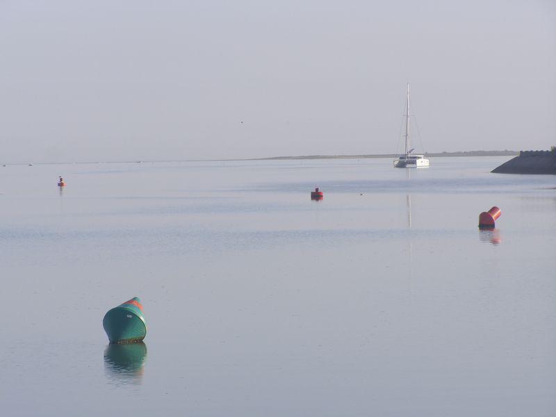 Seul ce qui longe la mer n'est pas bordé (Carole Darricarrère)