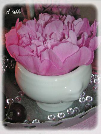 table_cerise_pivoine_031_modifi__1