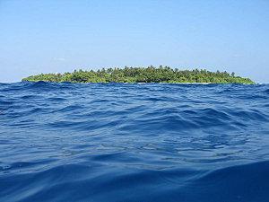 Les Maldives 129