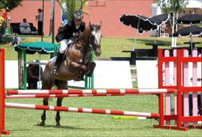 020710_p_cheval
