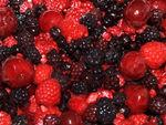 fruits_rouge_08