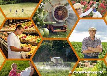 L'exposition de la mère aux pesticides favoriserait le cancer de l'enfant