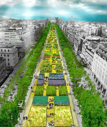 Quand paris se transforme en jardin potager g ant paperblog for Jardin truillot