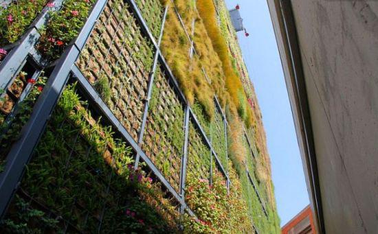 Un jardin vertical accroch une biblioth que pour - Estructura jardin vertical ...