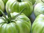 Autour Tomates Vertes
