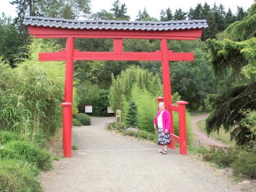 Le jardin japonais paperblog for Jardin japonais cholet