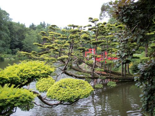jardin japonais jardin inspir la japonaise pictures to. Black Bedroom Furniture Sets. Home Design Ideas
