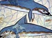citation jeudi. Métamorphose pirates dauphins Ovide