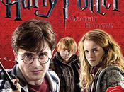 """Harry Potter Reliques Mort"" calendrier 2011."