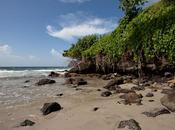 Martinique, soleil plage