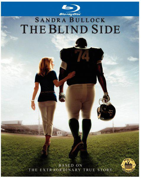 Essay on the blind side