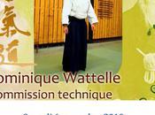 Stage d'aikido Waziers avec Dominique Wattelle